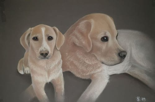 Blond couple, Pastell auf Karton, 35 cm x 52cm                 -SOLD-